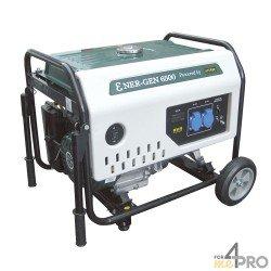 Grupo electrógeno gasolina ENER-GEN 6500