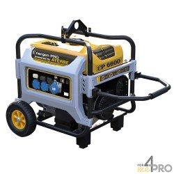 Grupo electrógeno gasolina ENER-GEN PRO 6600