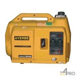 Grupo electrógeno gasolina insonorizado Ayerbe 1000 Honda