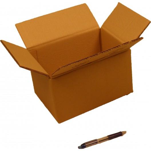 Cartón canal doble 25 x 18 x 14 cm