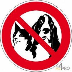 Señal prohibido a los animales