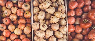 Bolsas para frutas